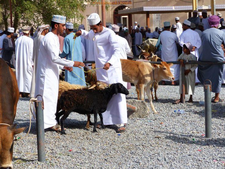 Auf dem Viehmarkt in Nizwa, jeden Freitag
