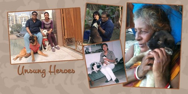 True dog lovers in India | The Unsung Heroes #inspiration #motivation #lovedogs