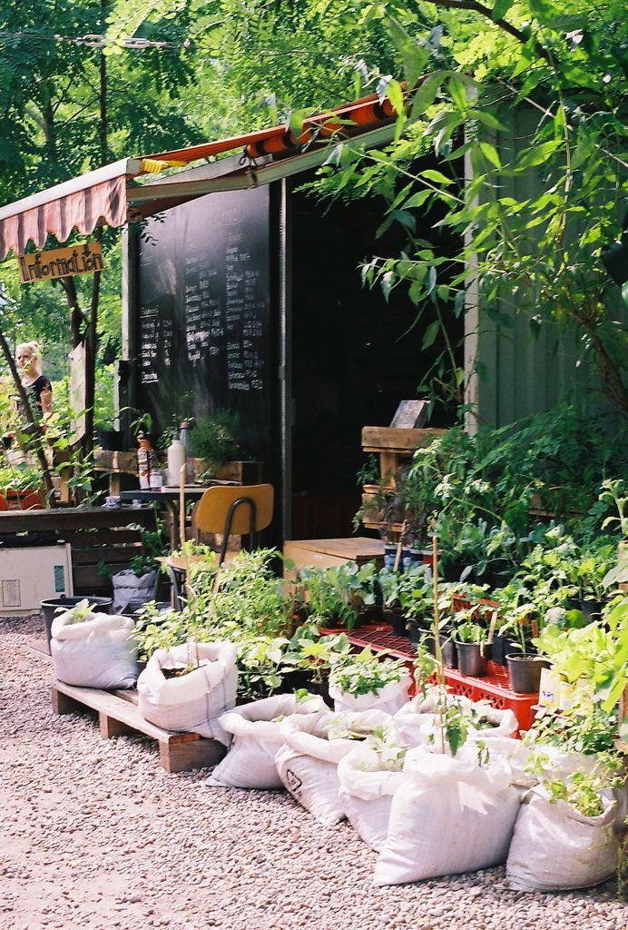 Pin Von Anna Chernova Auf Pati Gartengestaltung Hinterhof Garten Hinterhof