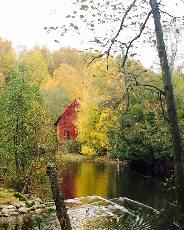 Fall Is In the Air. This picture was taken on a walk along Akerselva in Oslo, October 2015.