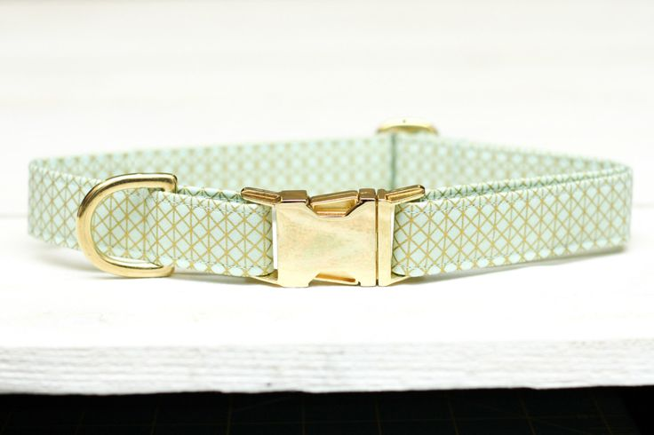 Mint and Gold Dog Collar,  Metallic Gold, Female Pet Collar with Metal Buckle by ZaleyDesigns on Etsy https://www.etsy.com/listing/213063945/mint-and-gold-dog-collar-metallic-gold
