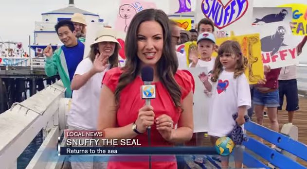 Shark Week – Snuffy the Seal: We're watching Snuffy the seal in anticipation, eagerly awaiting his return to the ocean. …so is someone else…
