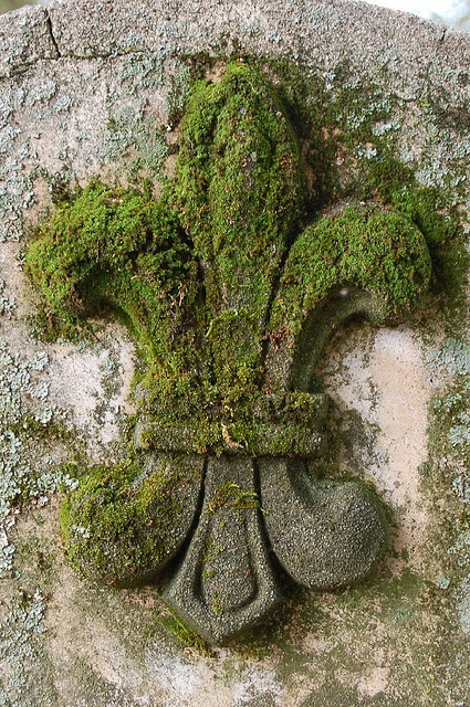 Moss-covered fleur de lis