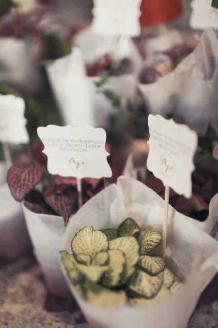 Regala macetitas como recuerdo de boda    Foto y diseño de Branco Prata