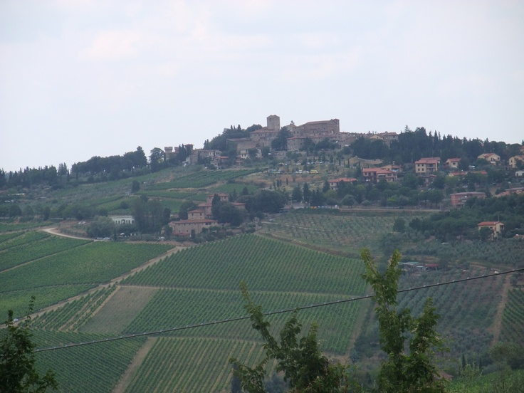 typical Italian objects. Vineyard. And the architectural style!