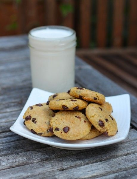The Best Paleo Chocolate Chip Cookies | fastPaleo Primal and Paleo ...