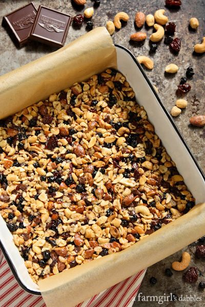 Nuts and Fruits Energy Bars {homemade KIND Bars} - farmgirlsdabble