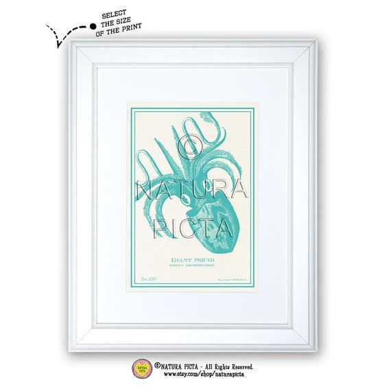 Giant Squid art printCoastal printBeachy by naturapicta on Etsy, $5.99 © NATURA PICTA All Rights Reserved