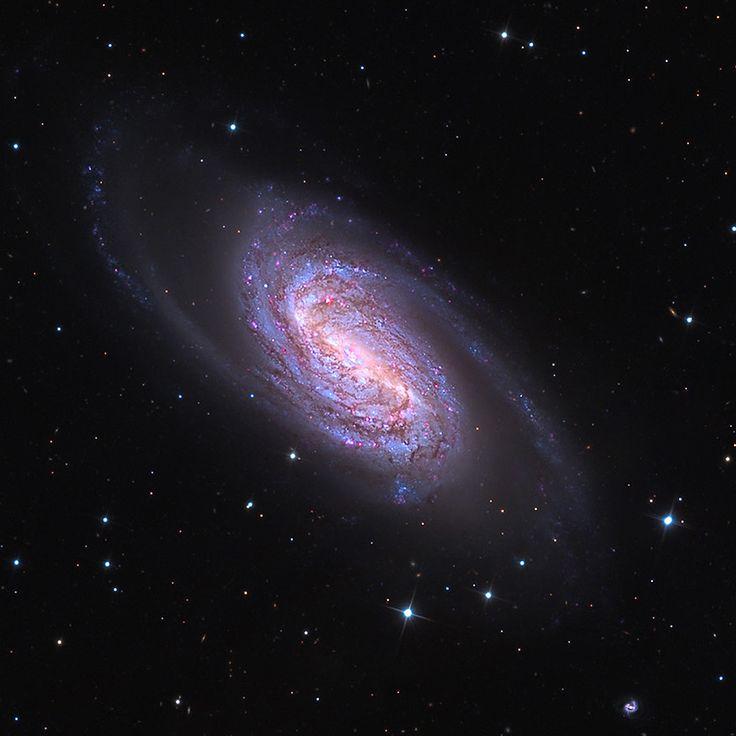 virgo supercluster of galaxies - 736×736