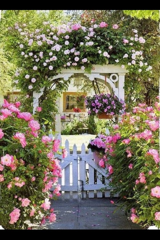 Beautiful garden arch gate