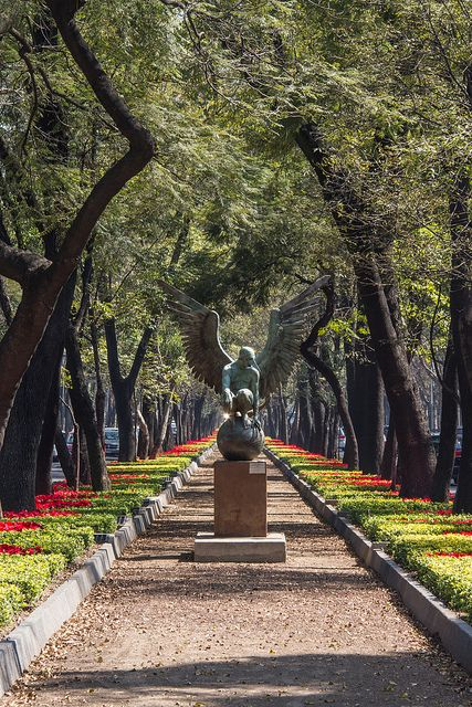 Bosque de Chapultepec  ~ Ciudad de México, DF, México