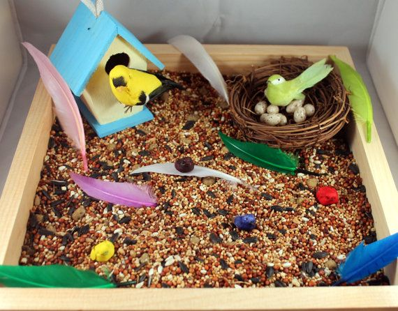 Bird Sensory Bin - Including Miniature Bird, Birdhouse and Nest with Eggs! on Etsy, $25.00