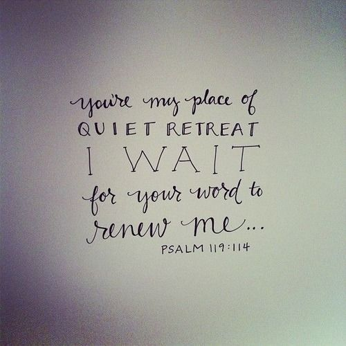 Quiet retreat...Psalm 119:114 - I'd like to make a reading nook with this as wall art