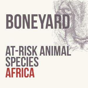 Boneyard: Three At-Risk Animal Species in Africa