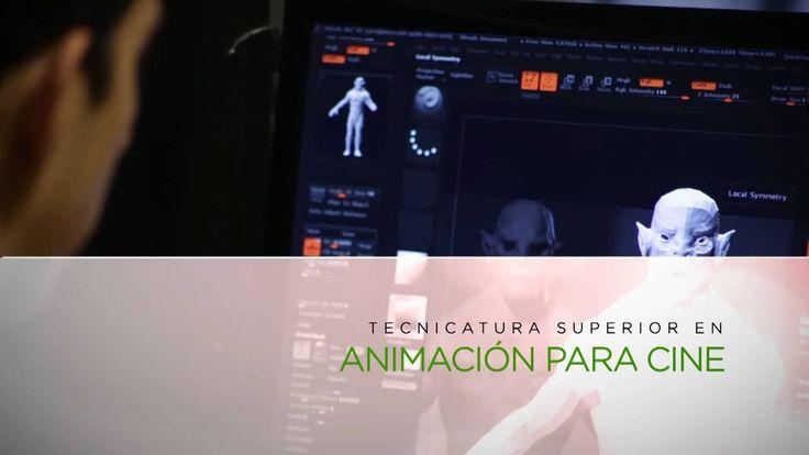 Tecnicatura Superior en Animación para Cine - Image Campus