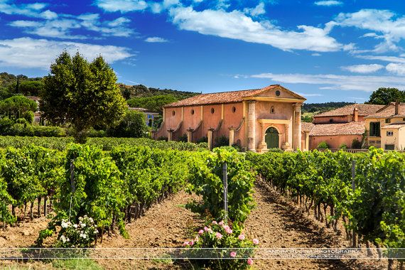 Wine Chateau on the Riviera photo print of by behindmyblueeyes
