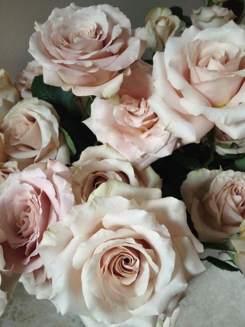 "Porcilana Spray Roses, so popular for the Brides that are looking for the ""Blush"" look."