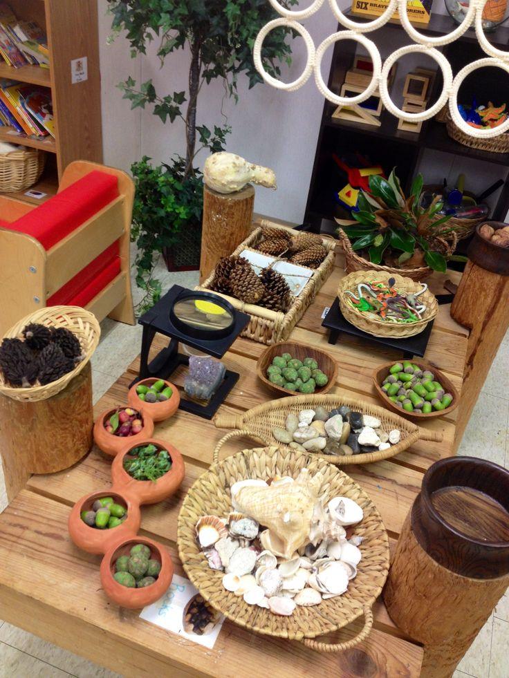 Pinterest Discover And Save Creative Ideas: Discovery/nature Table At Kinderoo Children's Academy