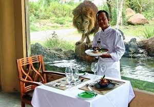 ever think for lunch with the lion