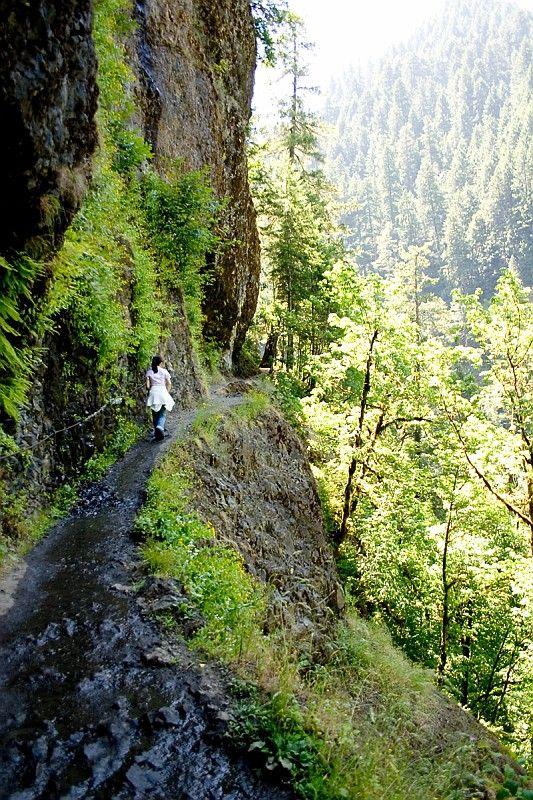 Hiking at Eagle Creek (Multnomah County, Oregon) def want to see northern california, oregan n washington.