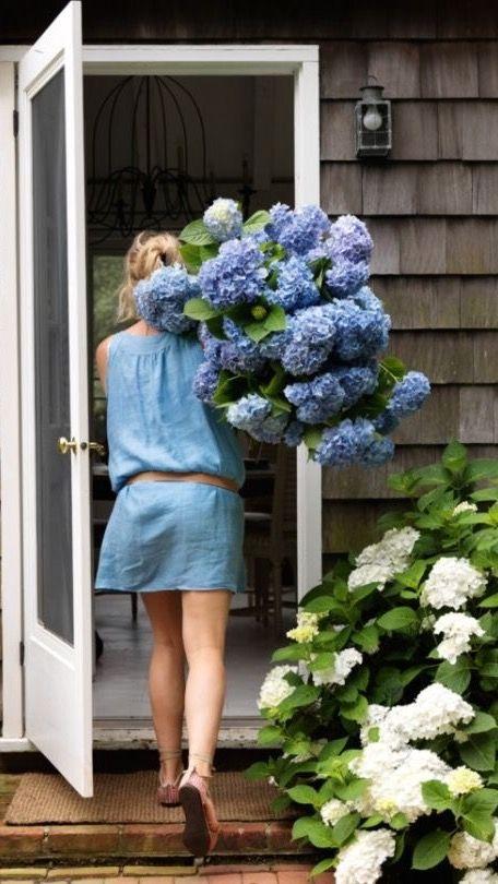 Need lots of hydrangeas - love :)