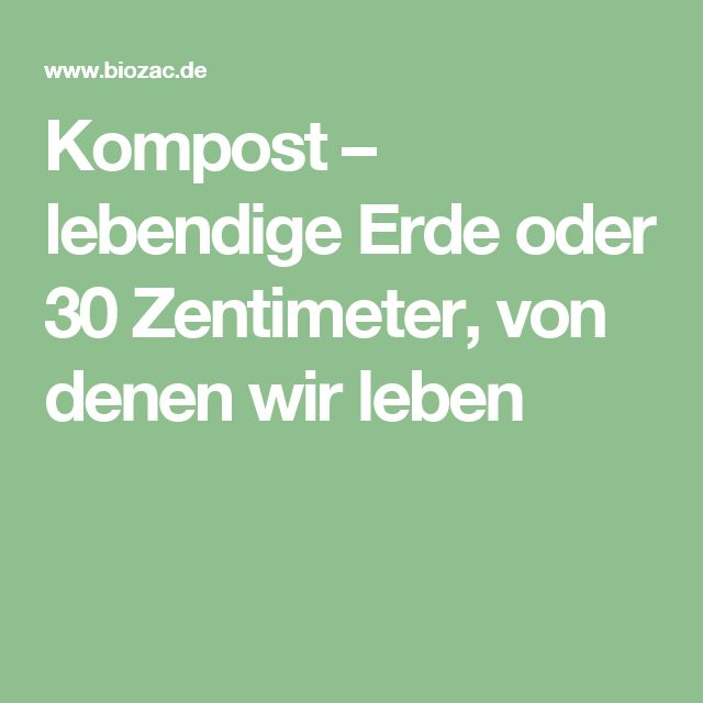 Gartenratgeber  En iyi 17 fikir, Christrose Standort Pinterest'te | Mausefalle ...