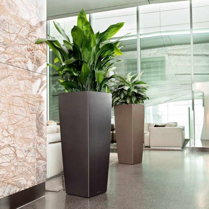 The art of decorating with tall planters. - 364 Best L绿植 Images On Pinterest