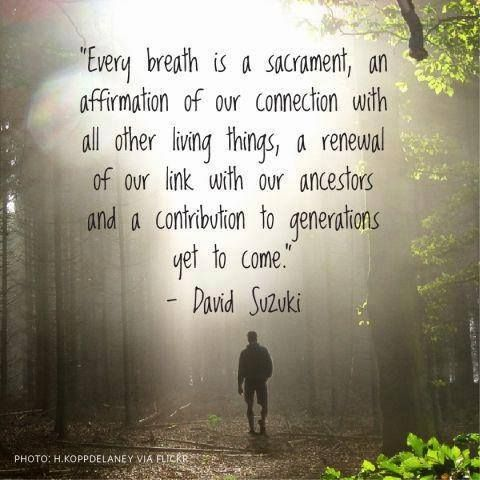 Every breath is a sacrament, an affirmation of our connection with all other living things, a renewal of our link with our ancestors and a contribution to generations yet to come. ~David Suzuki