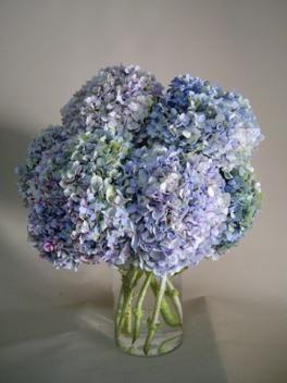 jarrn con flores para exterior