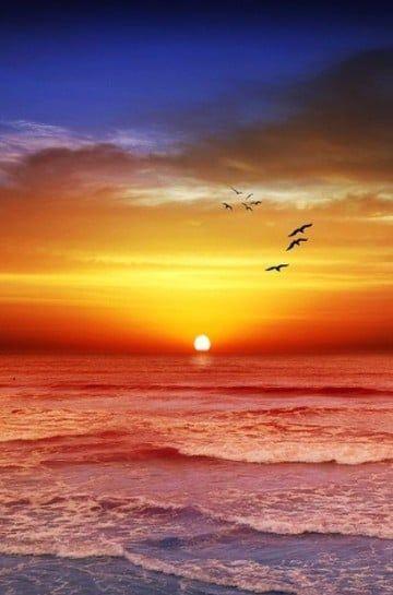 imagenes de atardeceres en el mar hermosos