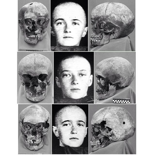"Skulls of the Grand Duchesses Olga, Tatiana and Anastasia Nikolaevna Romanova of Russia. ""AL"""