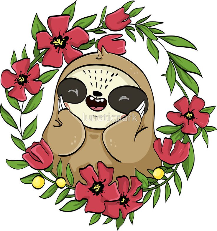 Slothy - the shy sloth