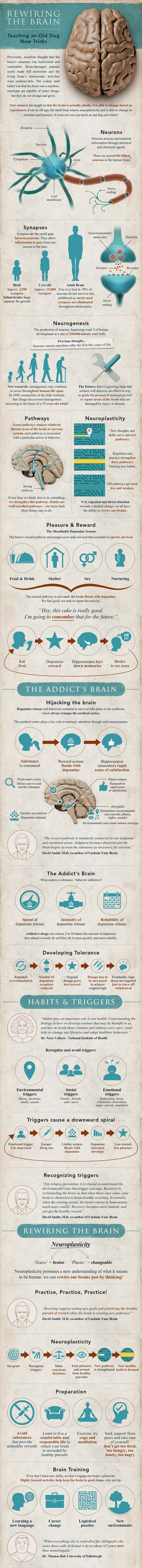 This Nifty Infographic is a Great Introduction to Neuroplasticity and Cognitive Therapy ~ ~ Did you know you can rewire your brain? Neuroscientific breakthroughs are revealing fascinating new truths about how we can control our brains to create a... Part One