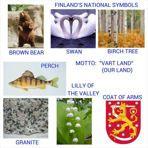Finland's National Symbols