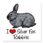 Silver Fox (Rabbit Breed)