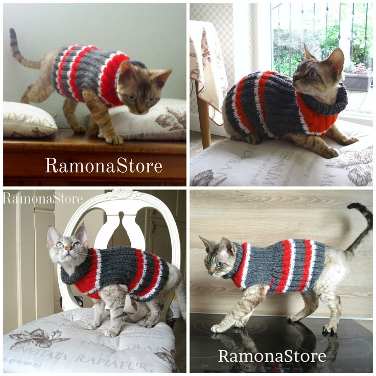 Hand knitted Cat or small Dog Sweater. For more visit RamonaStore on Etsy.com https://www.etsy.com/listing/188928546/hand-knitted-cat-or-small-dog-sweater?ref=shop_home_active_1