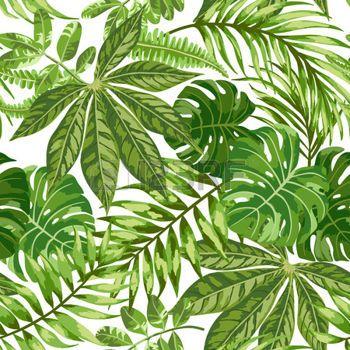 feuilles: Motif exotique Seamless avec des feuilles tropicales sur un fond blanc. Vector illustration.