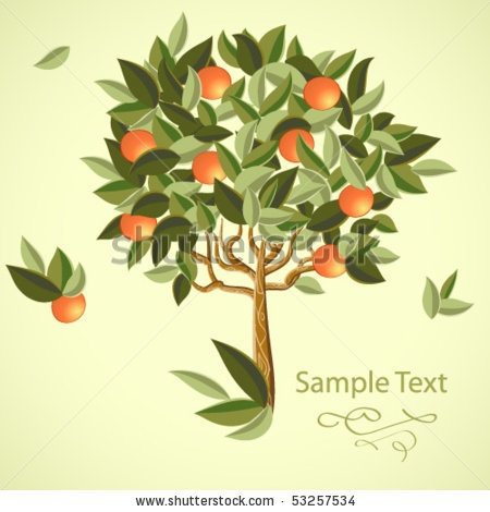 Google Image Result for http://image.shutterstock.com/display_pic_with_logo/421165/421165,1274098615,2/stock-vector-orange-tree-53257534.jpg: Cat, Tools, Mothers Trees, Trees Stockings, Orange Trees, Blossoms Trees, Oatmeal Waffles