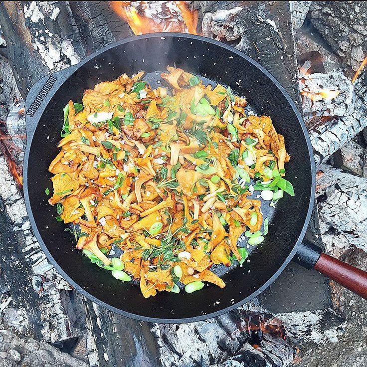 Regn och rusk idag en magisk dag för att gå ut i skogen och plocka svamp, för att sedan tillaga dom direkt över öppen eld Smörstekta kantareller på ett gott bröd ute i skogen slår fan det mesta, den nötiga smaken från det brynta smöret, och den rökiga känslan från elden! MAGI! Självklart tillagas hela härligheten i en gjutjärnspanna @skeppshult #skeppshult #gjutjärn #jagälskarregnochrusk #öppeneld #genuinmatlagning #enkelhet #kantareller #smör