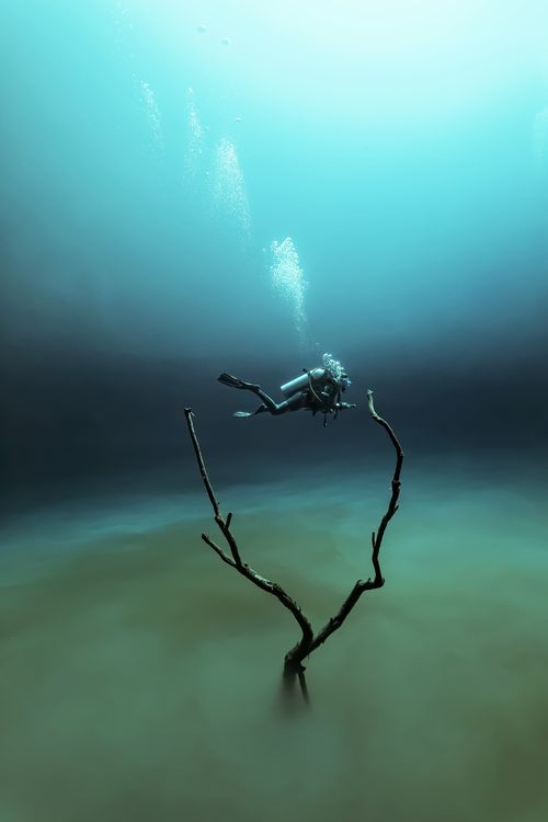 Diving the cenote - Angelita Photo by FABRICE GUERIN -- National Geographic Your Shot