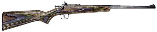 Crickett 252 .22lr Blued, Camo laminated~ So pretty!! @Dean Smith  I would love to have this!