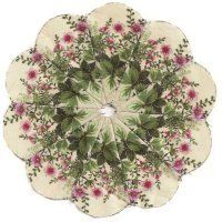 Dresden Kaleidoscopes-fussy cut  At the website there are 5 more.  She makes them for small projects - they look awesome!!