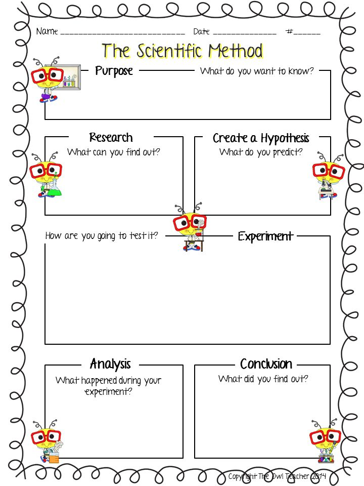 31 Scientific Inquiry Worksheet, RERUN Conclusion Writing Template