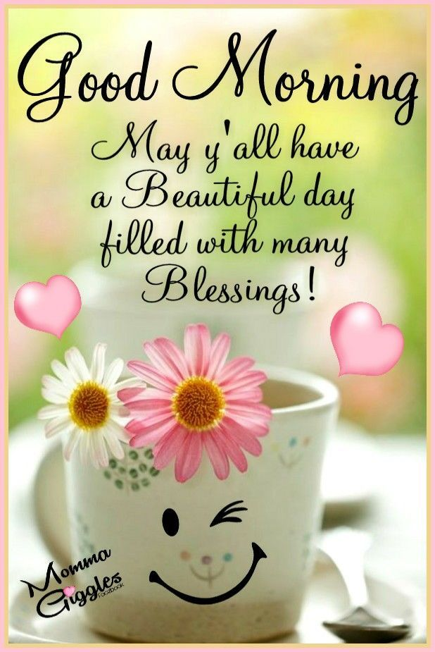 May Yall Have A Beautiful Day Filled With Many Blessings Good Morning Quotes Good Morning Inspiration Good Morning Friends Quotes