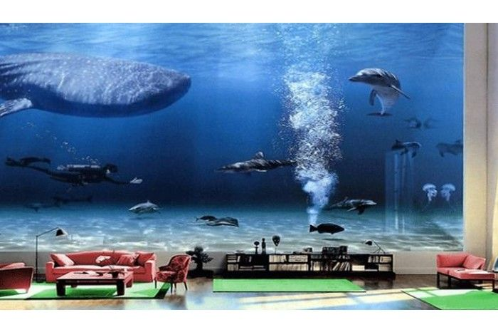 Bill Gates House Aquarium The Image Kid Has It