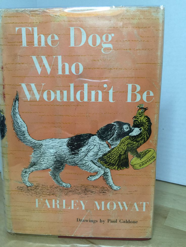 9 best online e book images on pinterest tutorials pdf and book the dog who wouldnt be farley mowat paul galdone illus fandeluxe Gallery