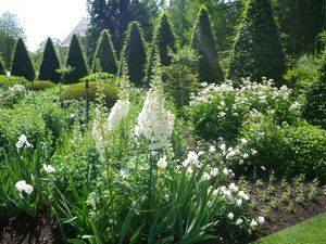 French Formal Garden - Bing Images