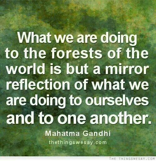 What we are doing to the forests of the world is but a reflection of what we are doing to ourselves and to one another. ~Gandhi