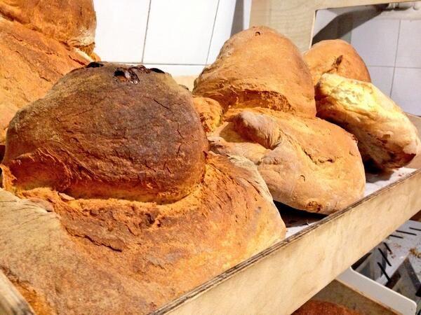Pane di Altamura - Puglia . Italy