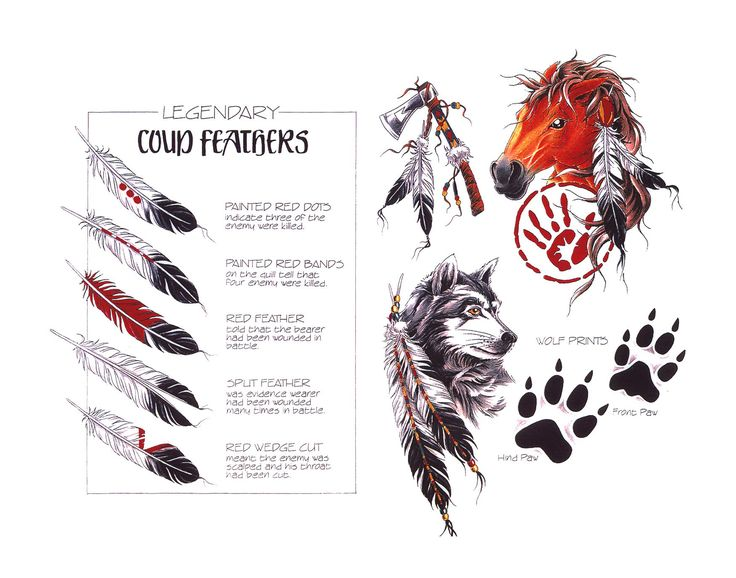 Designs tattoo ideas horse tattoos cherokee tattoos feathers tattoos